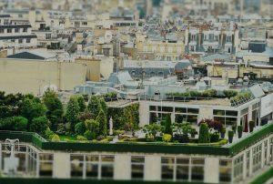 Jimmy Parat: marché locatif parisien